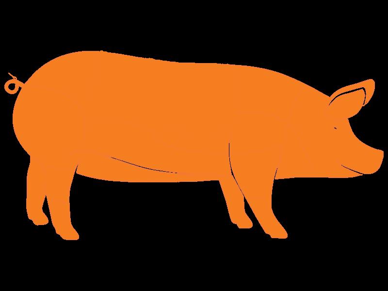 Recorte de Cerdo